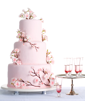 Your Wedding Cake